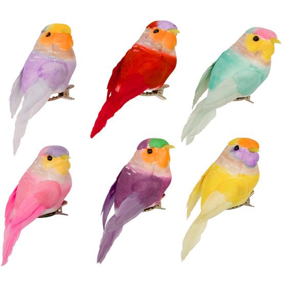 Fåglar med klämma