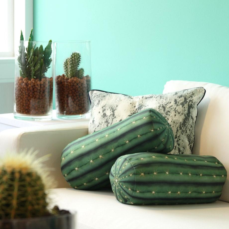kaktuskudde