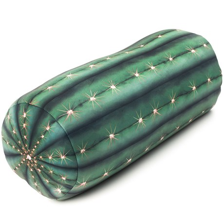 kaktuskudde1