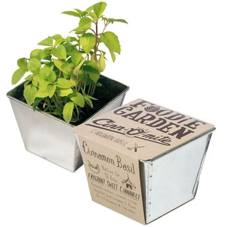 odlingskit